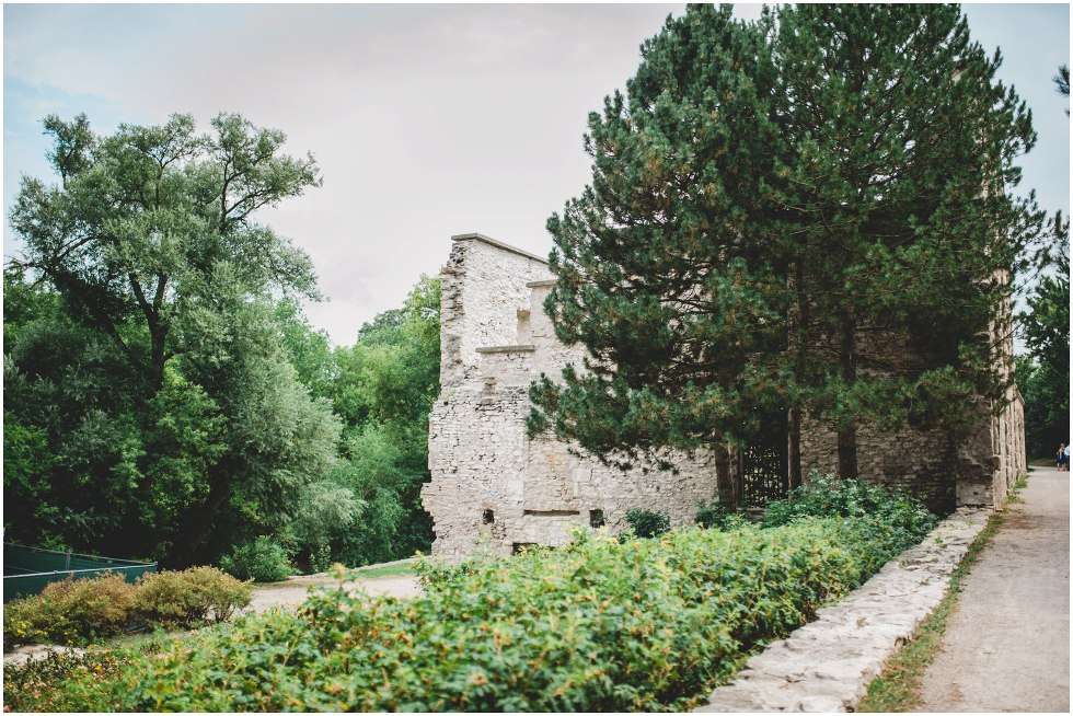 Goldie Mill Ruins wedding Guelph