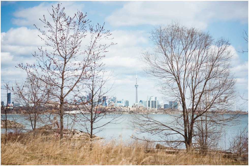 Toronto skyline from Humber West Park proposal photographer