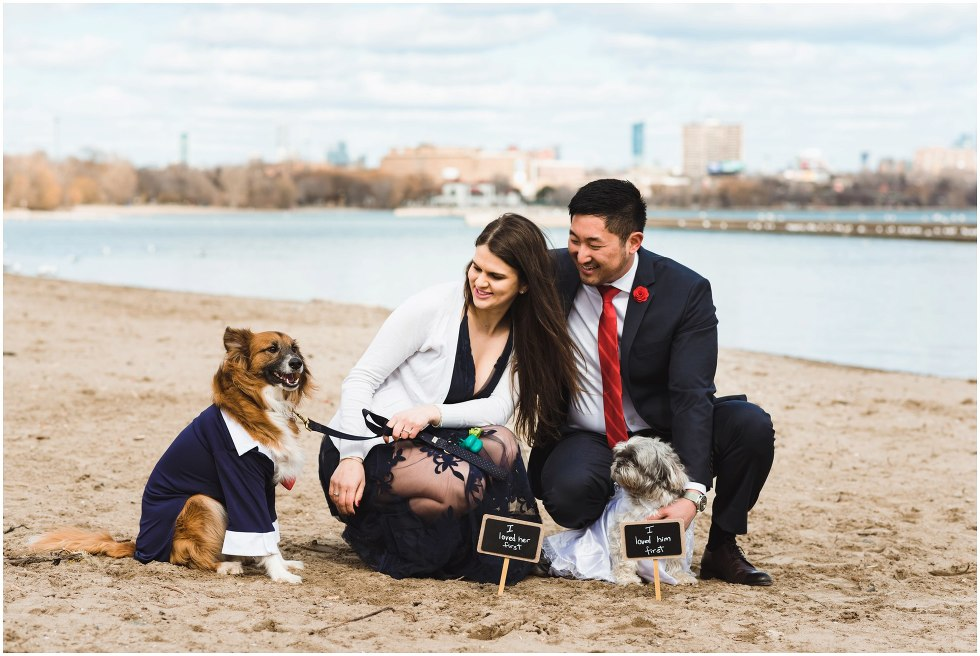 couple crouching on beach with one dog dressed in a matching suit and the other dog wearing a white dress Toronto proposal photography