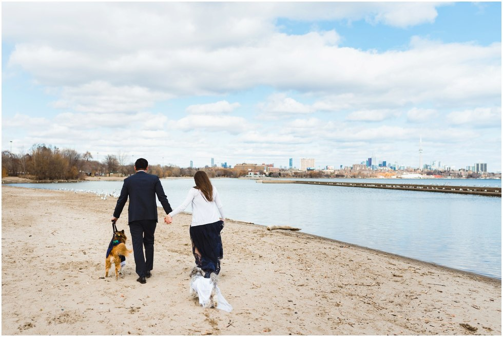 engaged couple holding hands and walking their two dogs down a beach with Toronto skyline in background proposal photography
