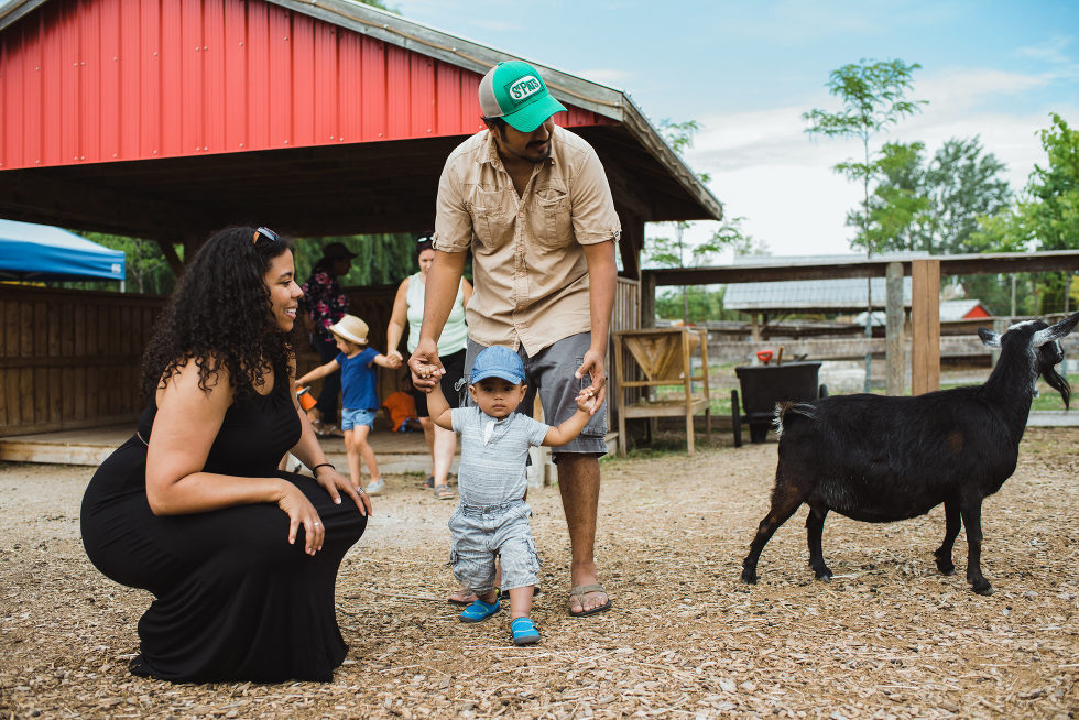 mom, dad, and child walking beside a black goat in a petting zoo family photo session