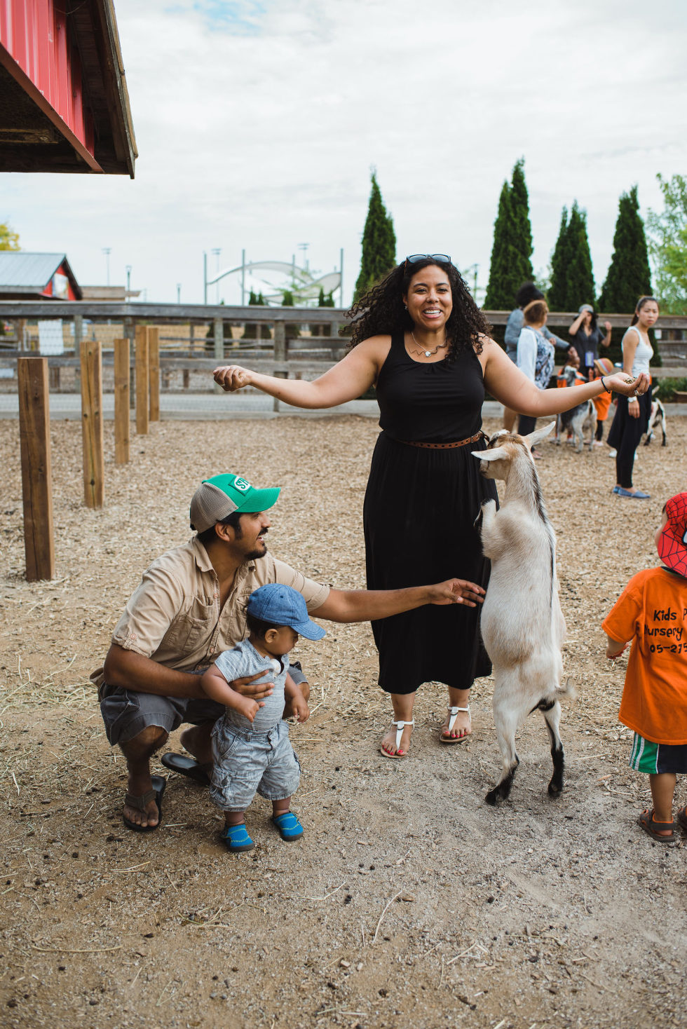father and son crouched to pet a goat that is jumping up on mother at a petting zoo family photo session