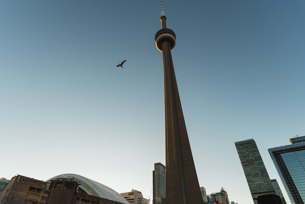 view of CN Tower, Roger