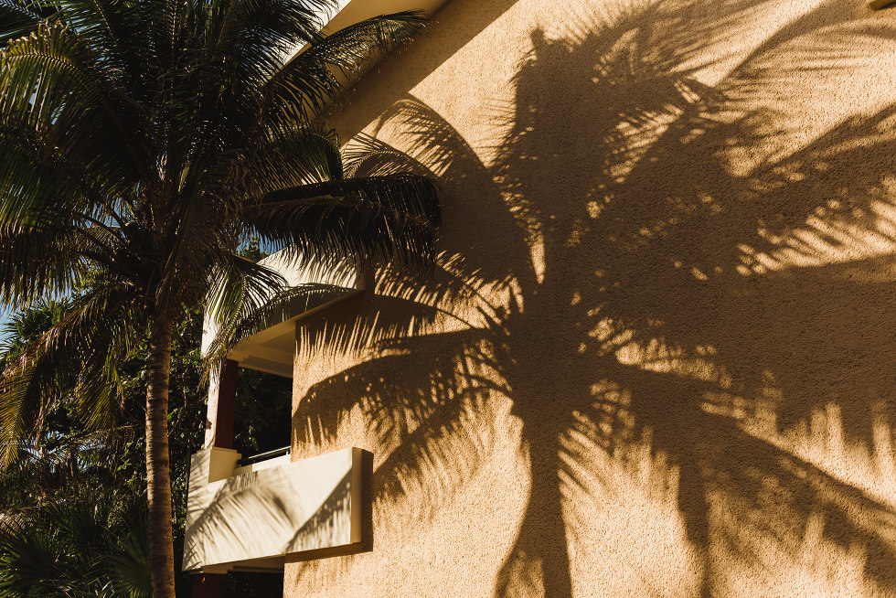 palm tree shadow cast on side of Now Sapphire Resort wall beach ceremony Mexico
