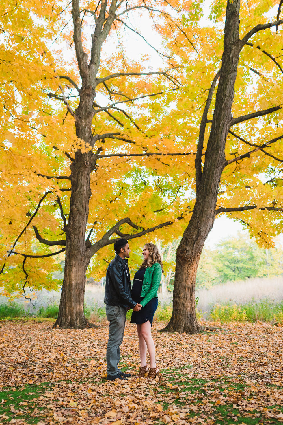 pregnant couple standing before a yellow tree during autumn in High Park, Toronto
