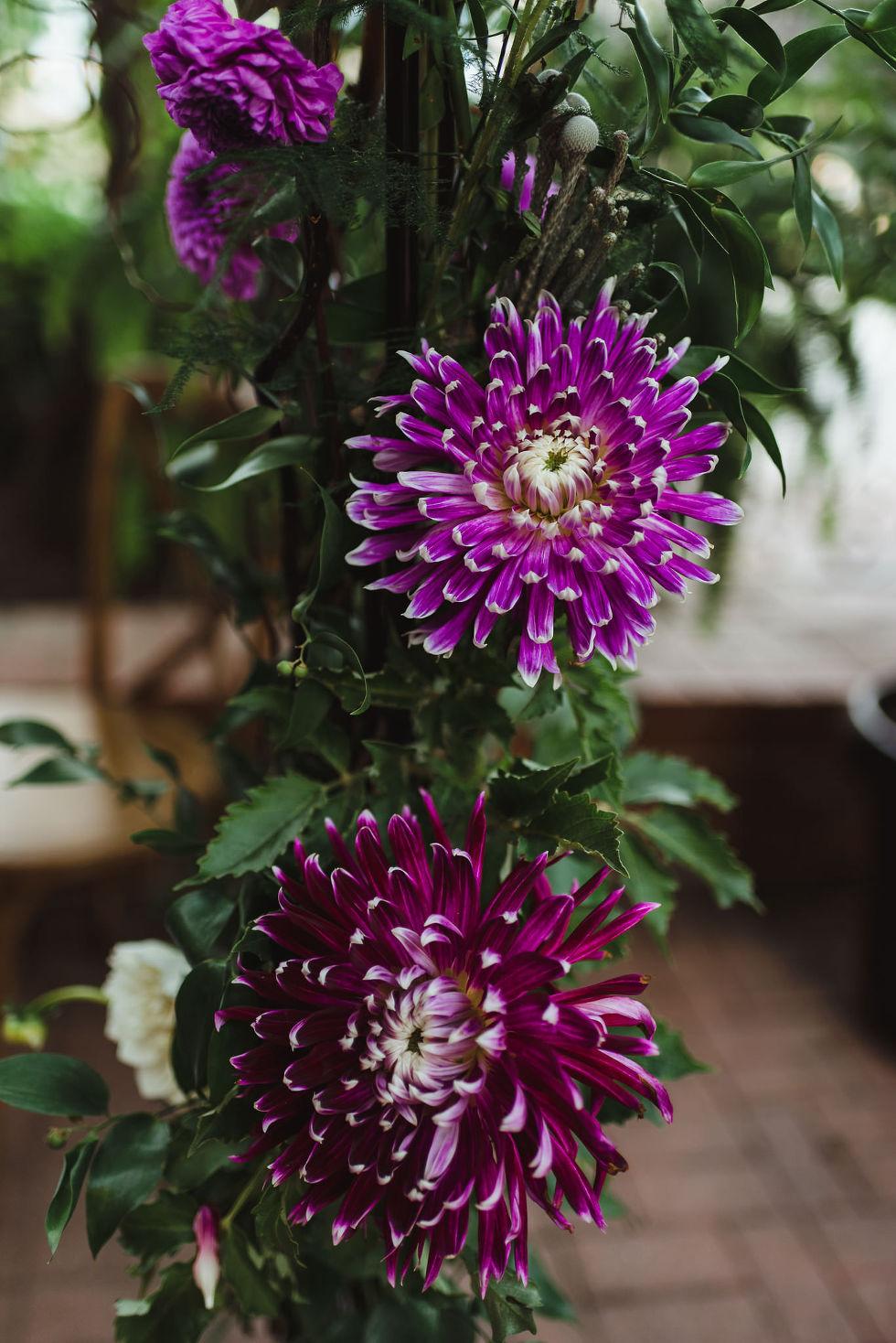 purple flowers at La Maquette wedding venue in Toronto Ontario