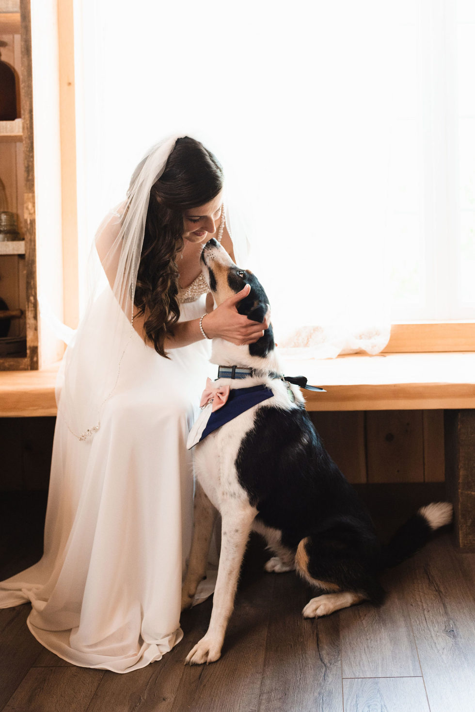 bride in her wedding dress and veil crouches down to touch her dogs head before her special wedding Toronto Carver cottage